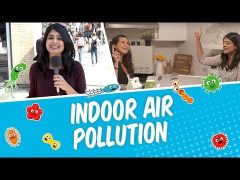 Real Talk | Indoor Air Pollution?