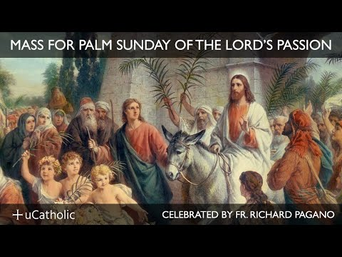 Mass for Palm Sunday of the Lord's Passion | Watch Live