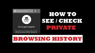 How to Check Private Browsing History | See Incognito Browsing History