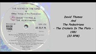 David Thomas And The Pedestrians - The Crickets In The Flats - 1981 (33 RPM)