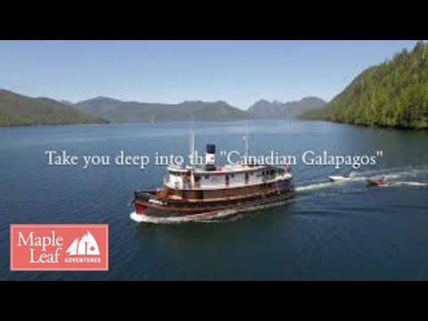 Stunning aerial footage of Gwaii Haanas, Windy Bay & Classic BC Ships