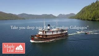 stunning aerial footage of gwaii haanas windy bay classic bc ships