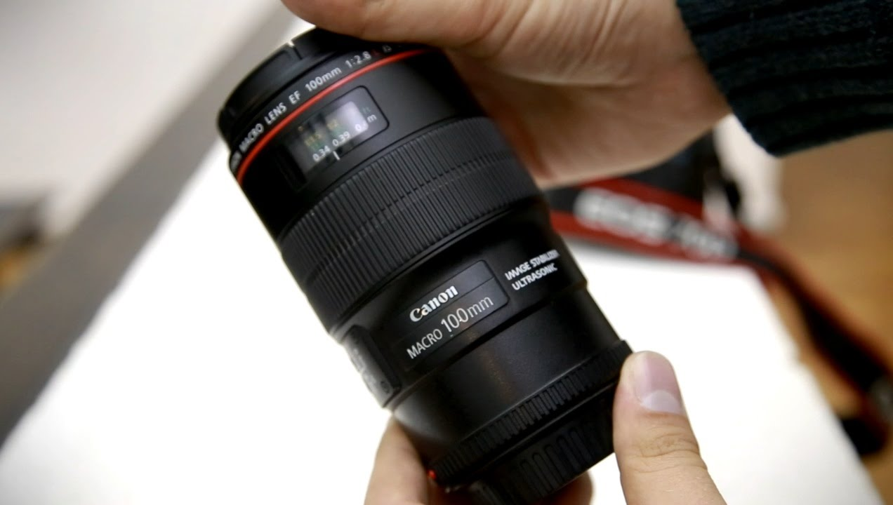 Canon 100mm f/2.8 'L' Macro IS USM lens review with samples (Full ...