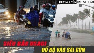 Việt Nam Đá Yếu Trước Siêu Bão Sài Gòn