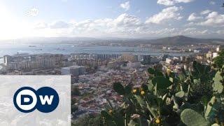 جبل طارق: عواقب وخيمة حال خروج بريطانيا من الاتحاد الأوروبي | الأخبار