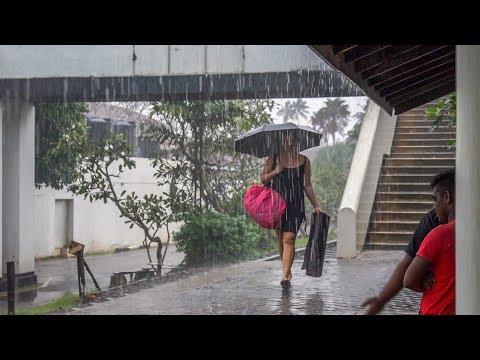 Bentota – unser erster Tropenregen • Sri Lanka • Weltreise   Vlog #005