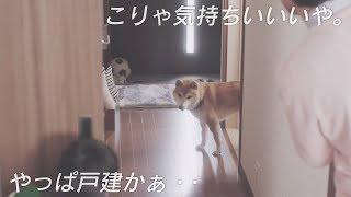 CM|田中が家を買った。「WEB限定 お呼ばれ編」