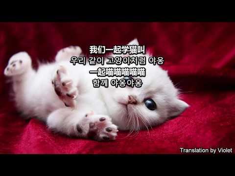 [애교부리는 중국노래][남녀듀엣] 学猫叫(고양이처럼 야옹) by 小峰峰X小潘潘(시아오펑펑X시아오판판) 2018 [歌词&한글가사]