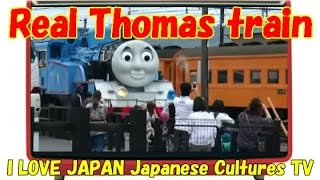 Download Video Real Thomas Train - Oigawa Train Shizuoka JAPAN MP3 3GP MP4