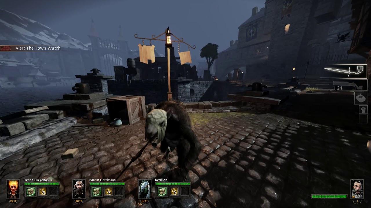 Singleplayer WARHAMMER: END TIMES - VERMINTIDE