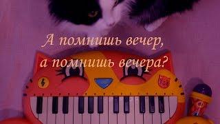 А помнишь вечер, а помнишь вечера / Нежное Мяу пианино Караоке