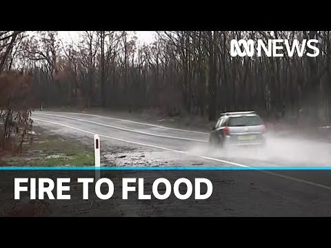 From Fire To Flood: Heaviest Rainfall In Decades Falls On NSW | ABC News