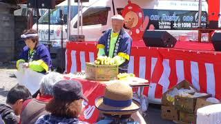 バナナの叩き売り‼️🙌🤤 バナナ姫ルナ 検索動画 30