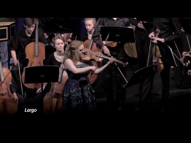 02 Davis High Baroque Ensemble Concerto for Viola d'Amore and strings in D Minor Vivaldi