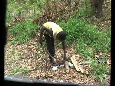 Life of a village girl (Abigail) -Nkwoi (Bosumtwe District, Kumasi - Ghana)