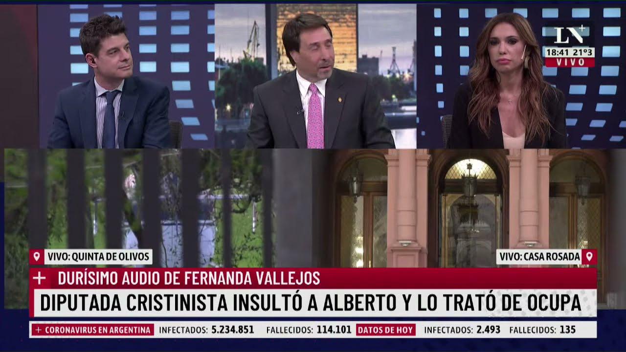 Download La reacción de Feinmann al audio de Fernanda Vallejos