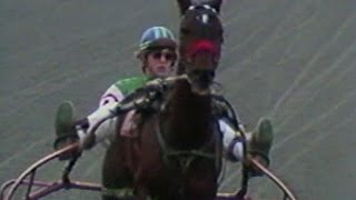 The End of An Era for Harness Racing in Massachusetts