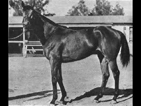 Seabiscuit Vs Ligaroti 1938 Match Race Doovi