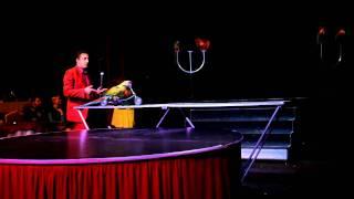 Цирковые попугаи(Цирковые попугаи., 2011-10-16T20:10:50.000Z)