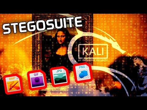 ▷ StegoSuite | Como OCULTAR ARCHIVOS en IMAGENES (Esteganografía) en Kali Linux
