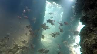 Scuba Diving - Vizag