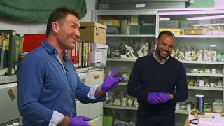Pat Cash Explores the Wimbledon Museum's Treasure Trove