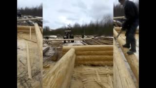 Рубка дома из бревна на видео