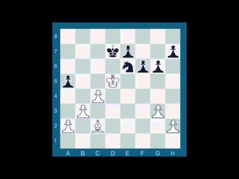 ChessMaster GME: Waitzkin Vs. Sarwer J.