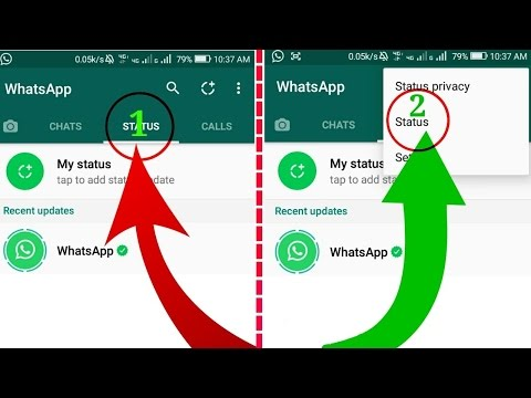 How To Update  WhatsApp Status: Explained In Tamil
