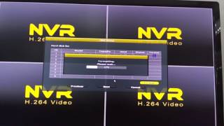 how to format the NVR