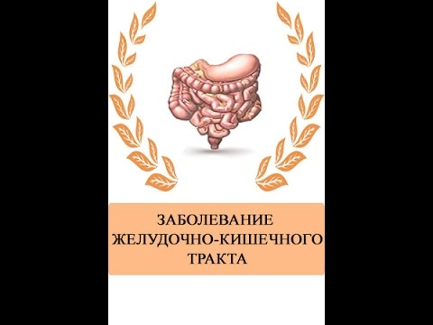 Гастрит - лечение болезни. Симптомы и профилактика