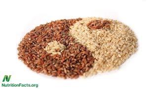 Vliv celozrnných potravin na střevní mikrobiom