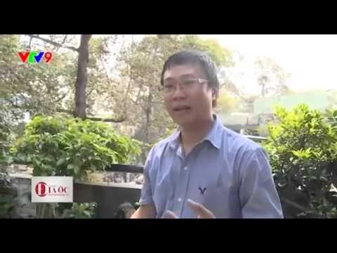 Vườn sân thượng. Kts.Huỳnh Xuân Hải