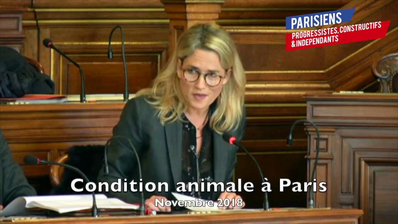 INTERVENTION SUR LA CONDITION ANIMALE À PARIS