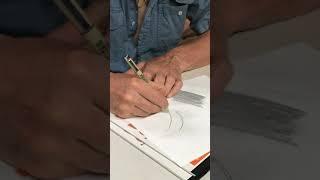 Ento Illustrations: Setae (I) - Drawing single large macroseta