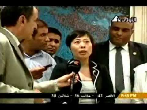 Dr.kamal el ganzouri -Mr. Tamer Abdel Aal - Jushi Egypt For Fiberglass