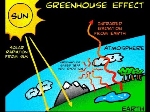 Greenhouse on emaze for Green housse effect