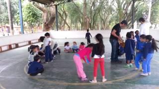 Gambar cover SOS Resgate de Abelhas Sem Ferrão na EMEI - 6A - Erica e Kátia