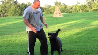 Canine Concepts - Lorbas / Obedience Training 07/22/2012