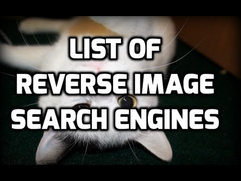 Best Reverse Image Search Engines List
