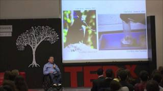 Cognition without cortex: Onur Güntürkün at TEDxJacobsUniversity