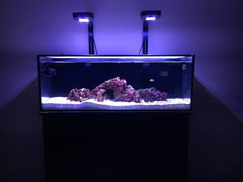 Innovative Marine 30L Tank Update 4