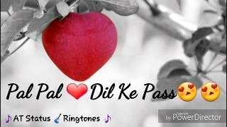Pal Dil Ke Paas Status Ringtone || Romantic Video Status | Arijit Singh | Whatsapp Video Status