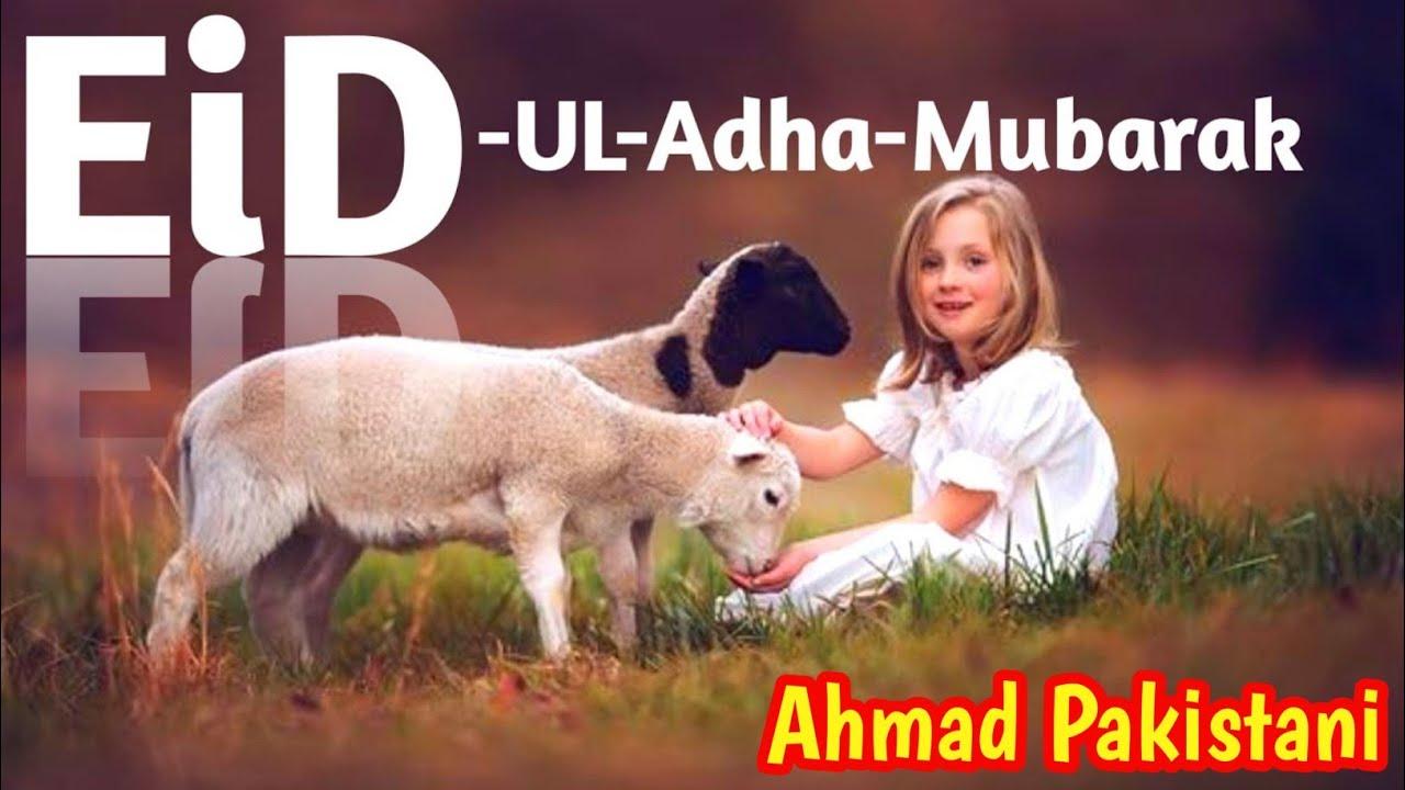 Bakra Eid Mubarak WhatApp Status ♥️ Eid Ul Azha Mubarak Status ♥️ Qurbani Karenge Status