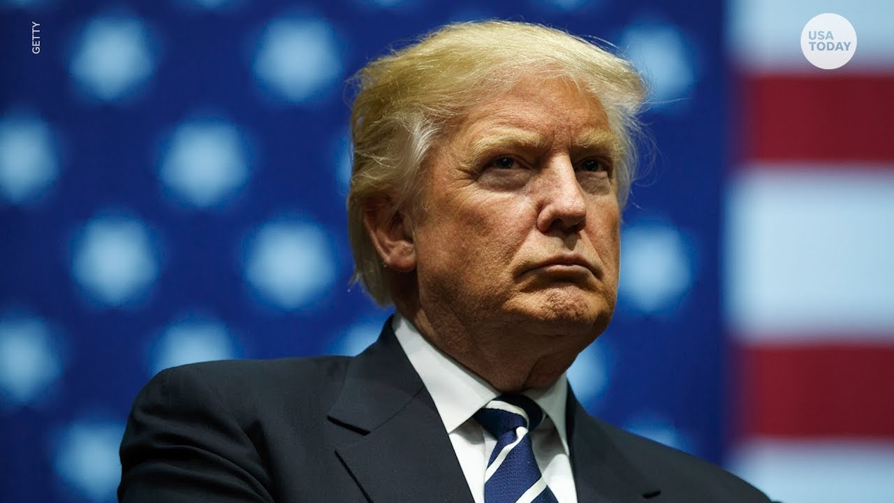 Appeals court sides with publisher for Mary Trump's family tell-all ...