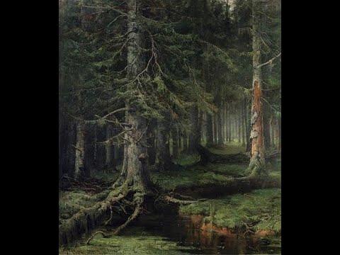 Случай в лесу.