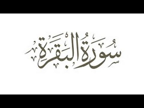 The 20 Riwayat As-shatiyya & Dourra Complete Guide – Додатки в ...