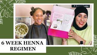 Beginners 6 Week Henna Hair Strengthening Regimen Low Porosity High Porosity