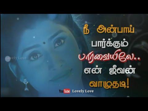 Whatsapp Status Love Video Kanukuley Ennaivaithai Tamil Love