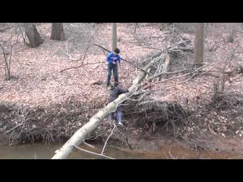 Kid falling off a tree into a stream!